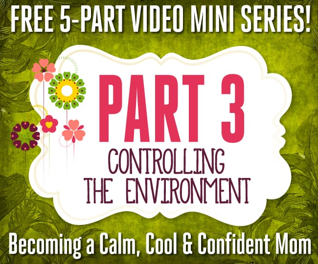 Free 5-Part Video Mini Series - Part 3: Controlling the Environment