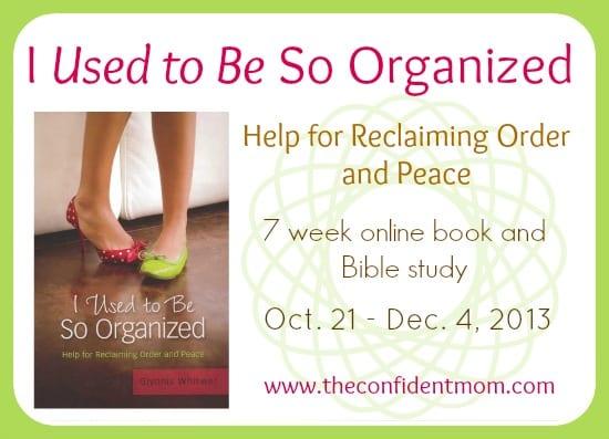 I-Used-To-Be-So-Organized-Study-Main