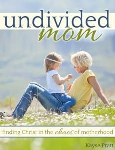 Unidivded-mom-cover