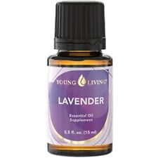 lavender young living oil
