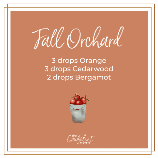 Fall Orchard Autumn Essential Oil Diffuser Blend