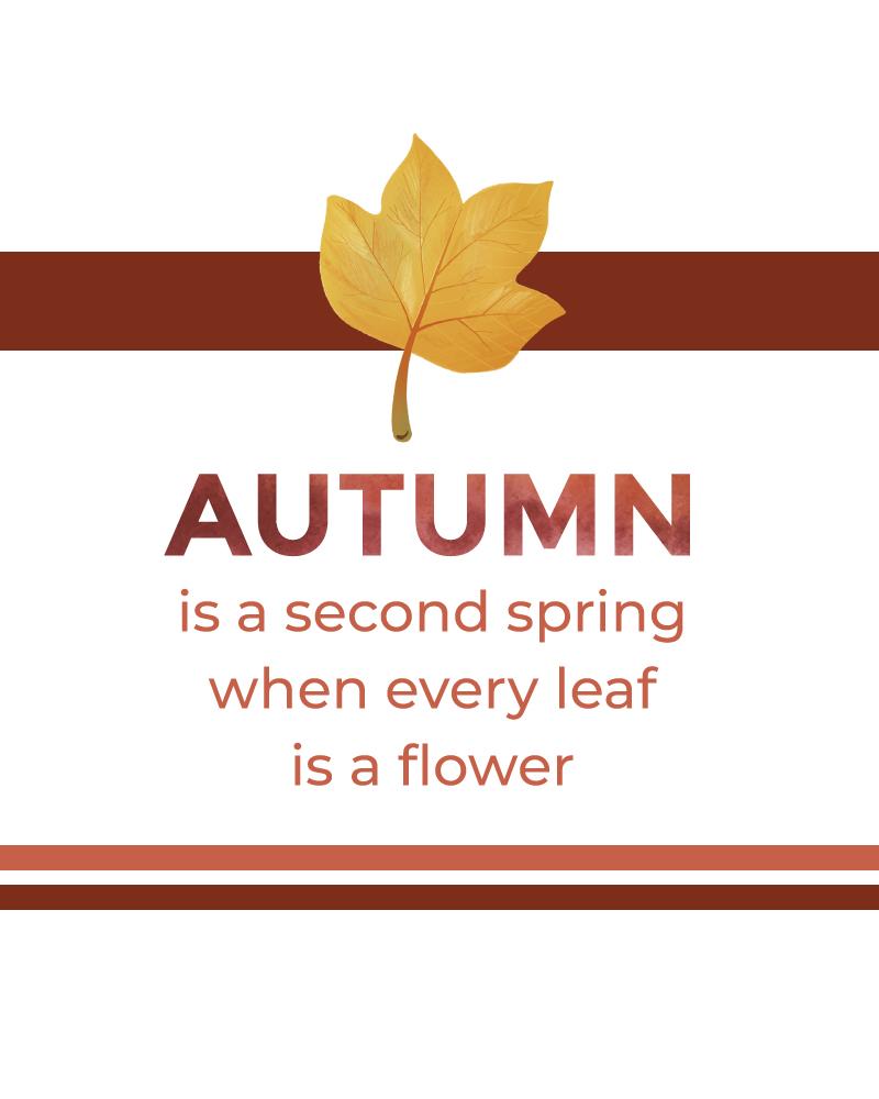 Autumn Second Spring